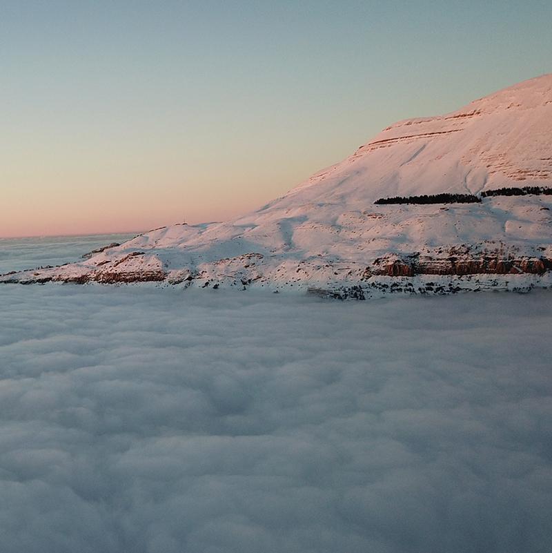 sanine-in-snow.jpg